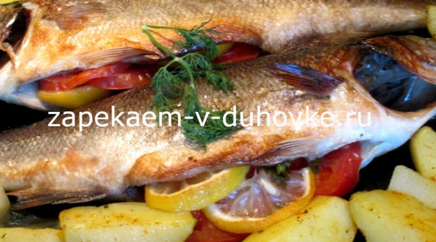 сибас-рыба запеченная в духовке